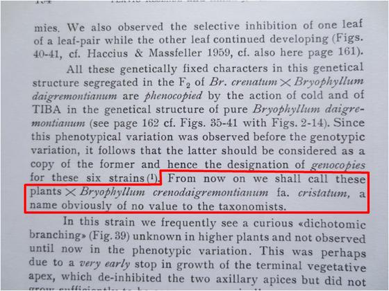 Resende et al. 1965.png